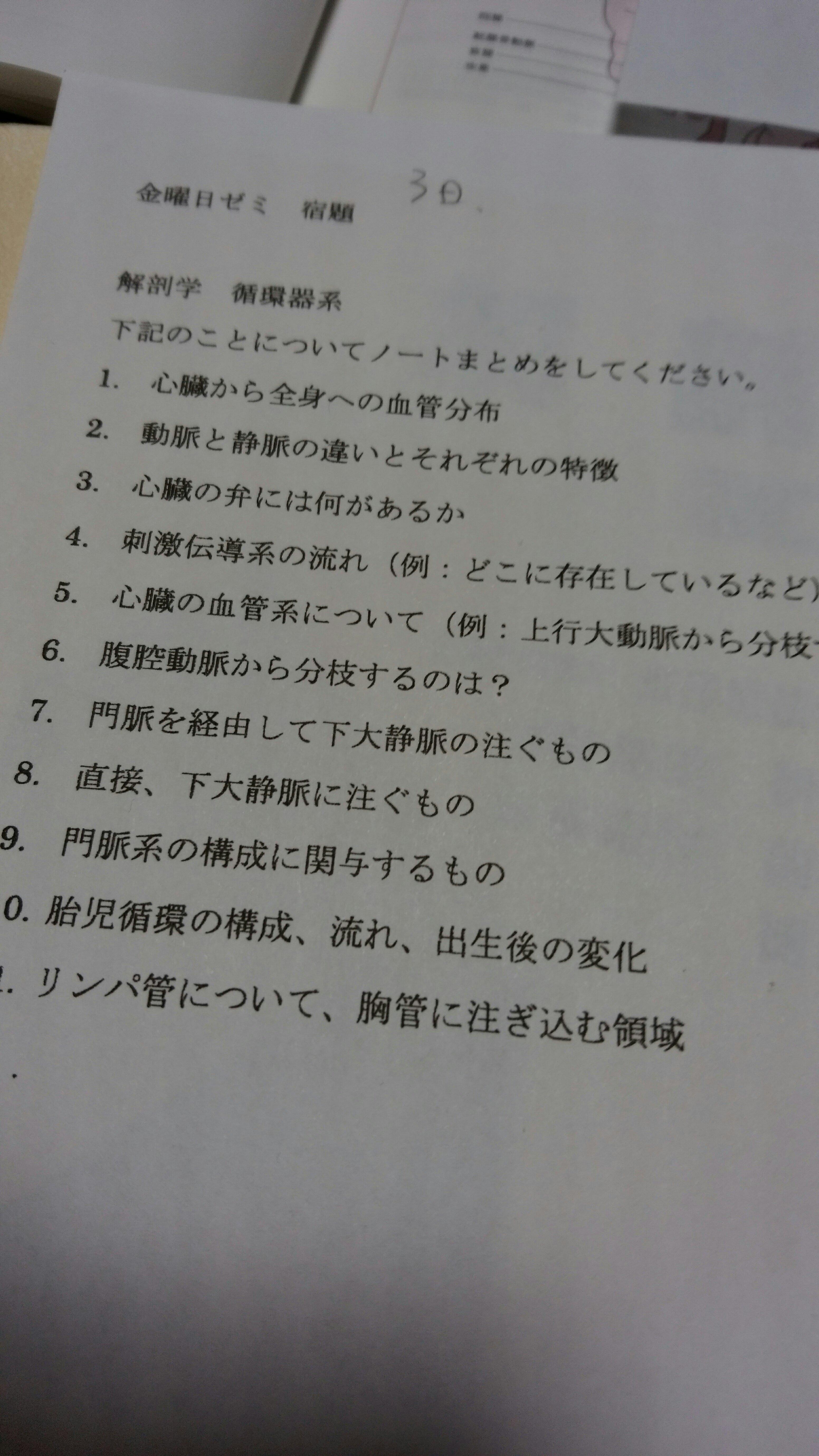 日記画像-宿題